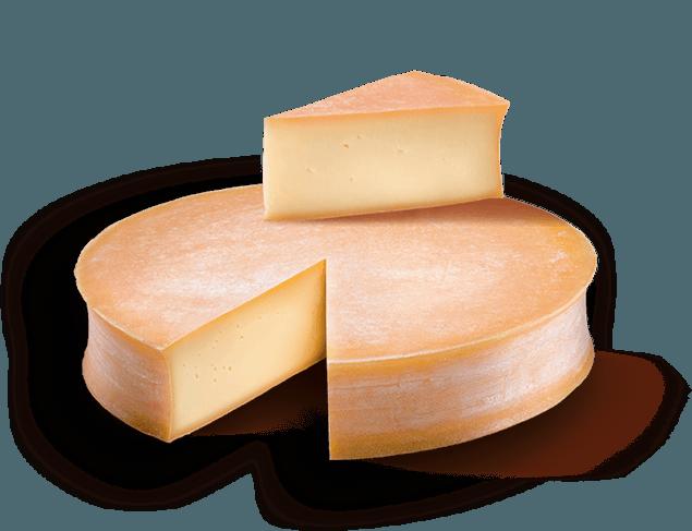 Fiche fromage – L'Abondance, tout schuss !