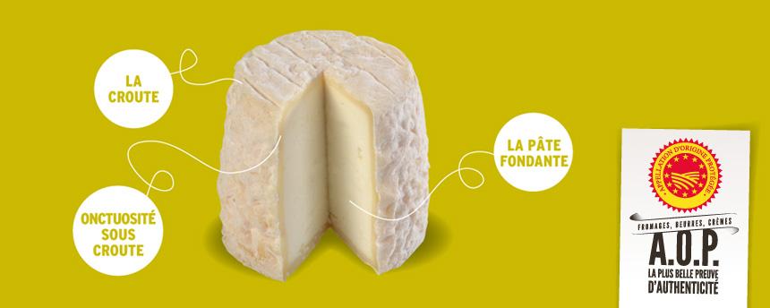 Fiche fromage – Le Chabichou du Poitou (c'est vraiment son nom)
