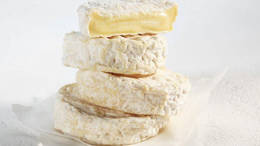 Fiche fromage – Saint Marcellin, saint quel plaisir.