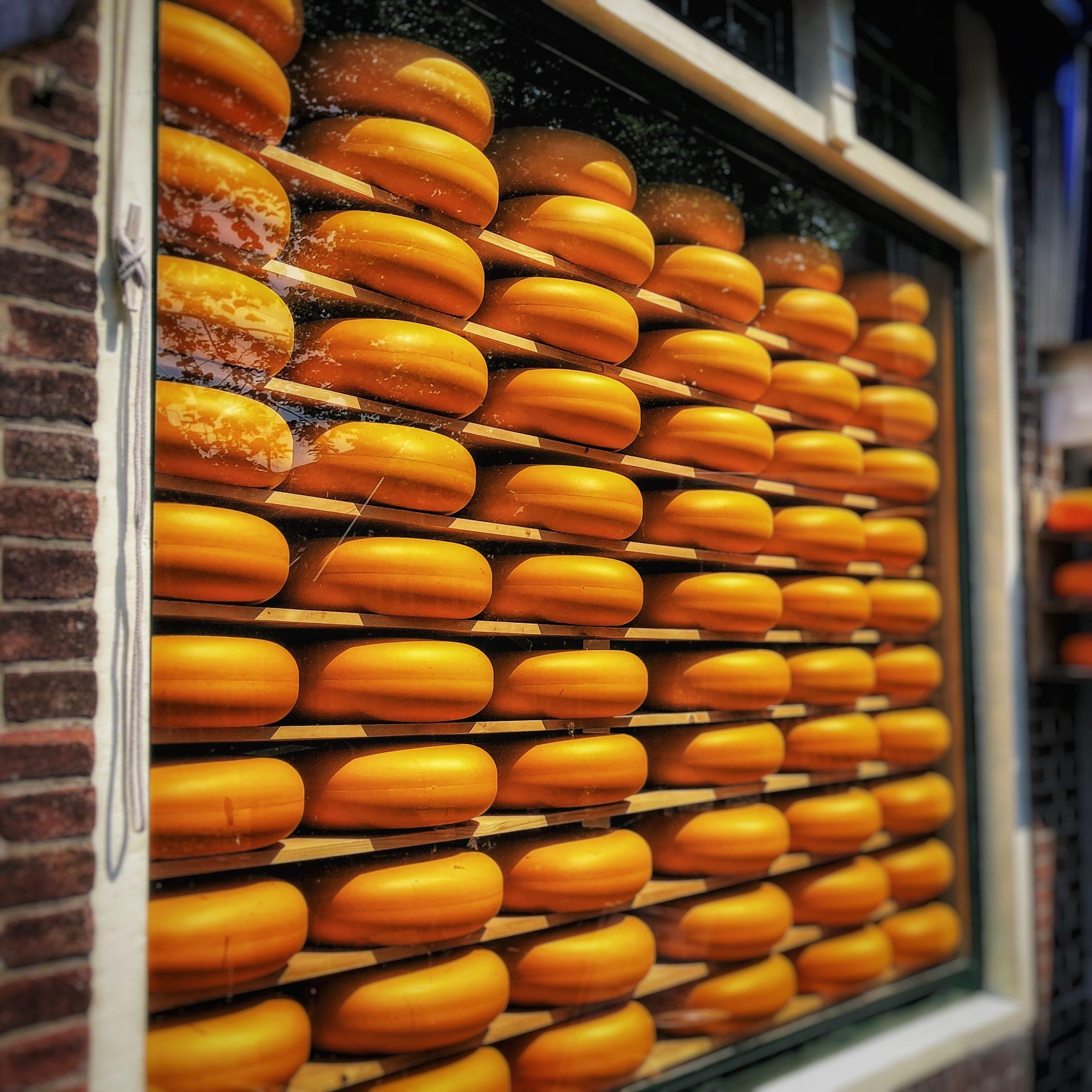 Les plus gros fromages du Monde