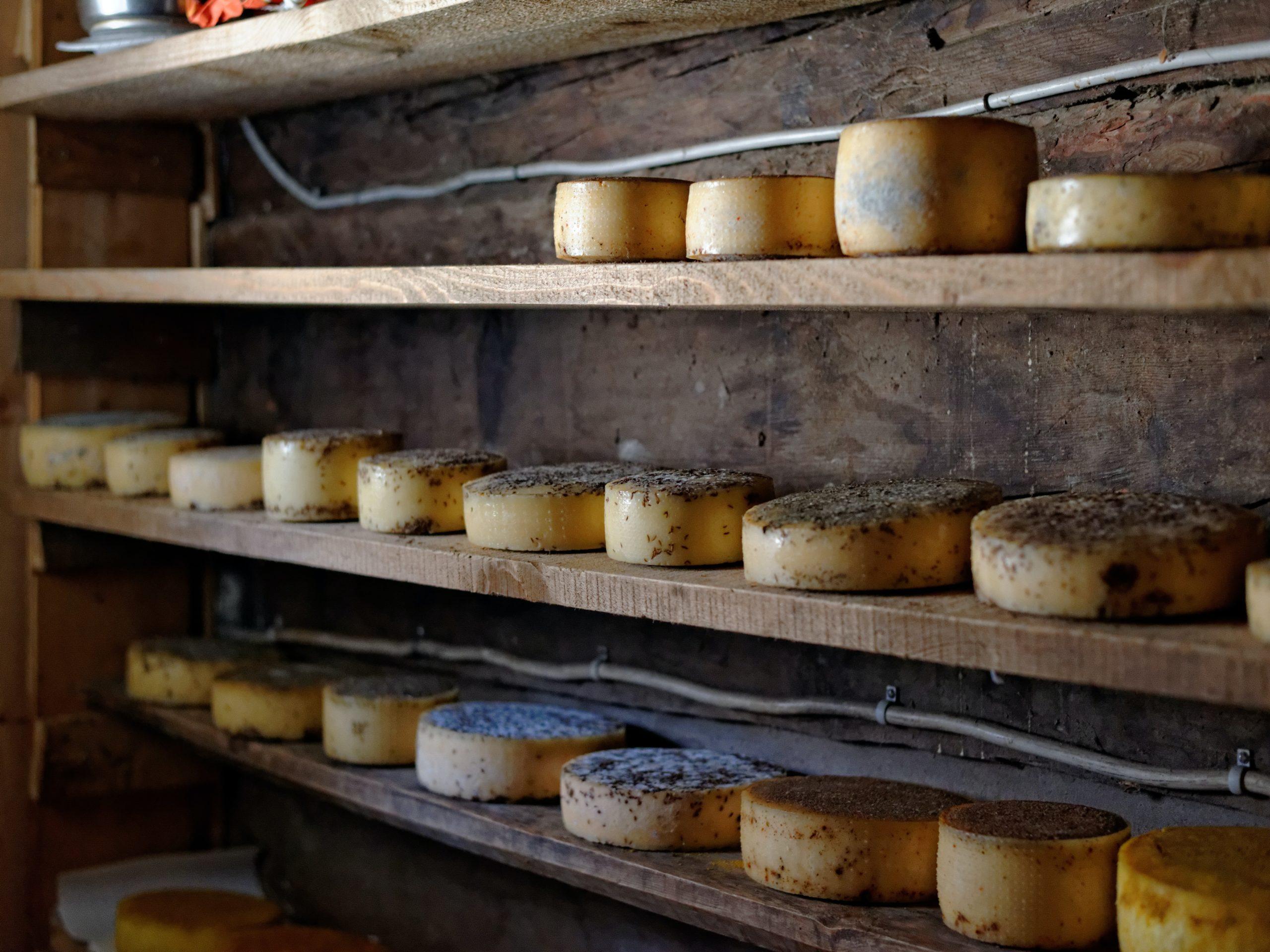 Comment affiner son fromage à la maison ?