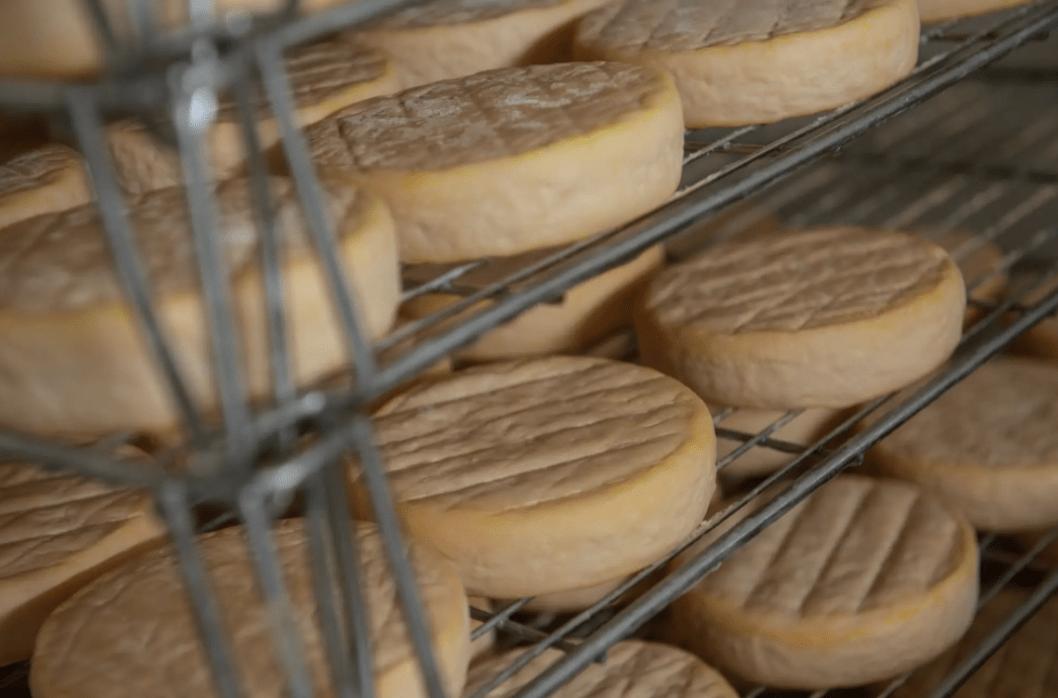Fiche Fromage : Le bon vieux Munster