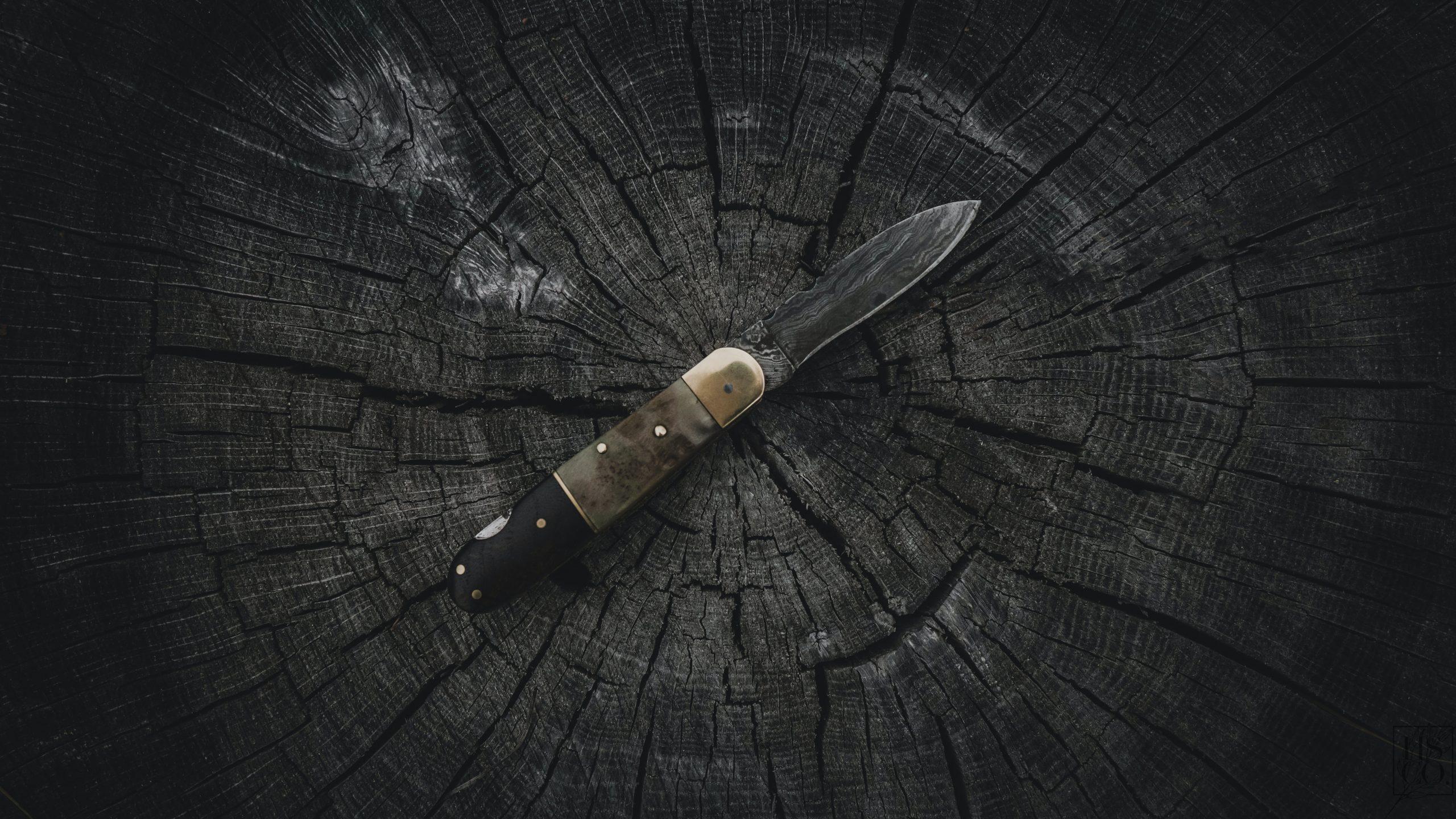 Couteaux à fromage : les différences